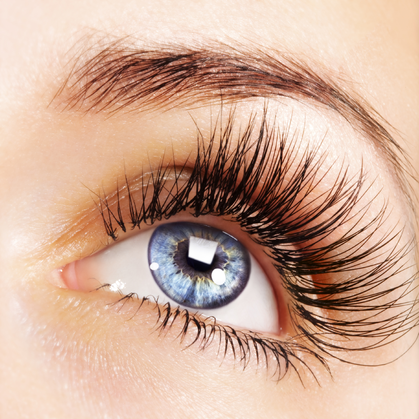 Causes For Eyelashes Faling Add Some Color To Your Life