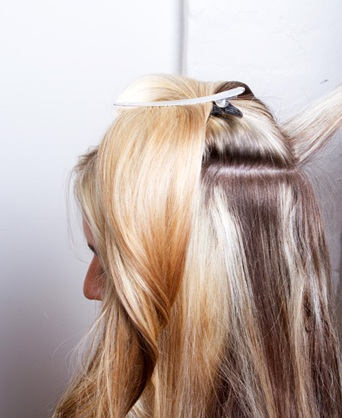 Using either your hands or brush  apply henna from root to tips Modern Brigitte Bardot Hair